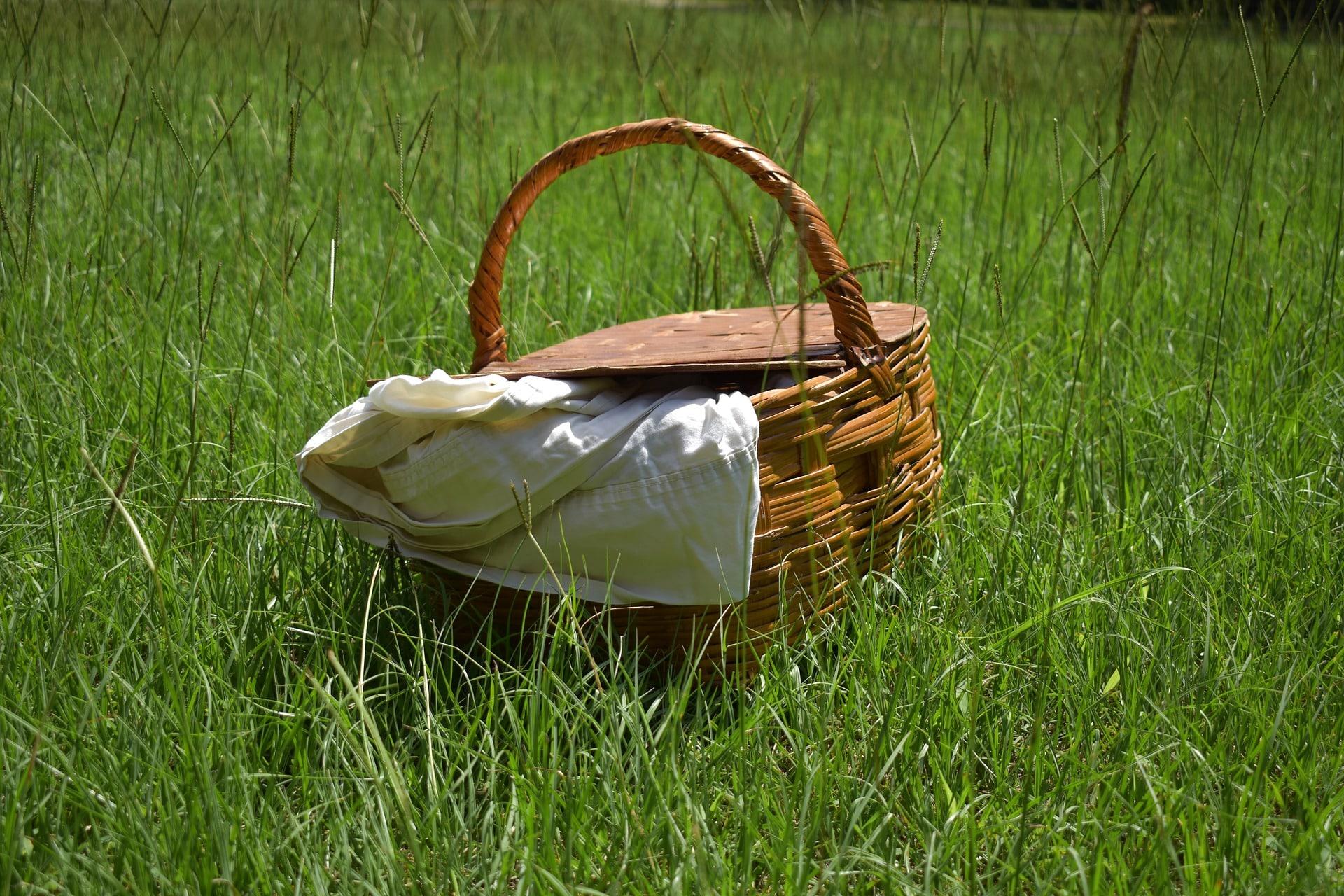 panier repas sur l'herbe